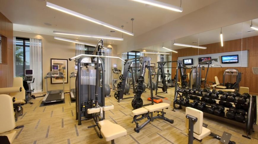 domain-gym